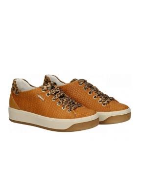 Sneakers Cuña IGI&CO Espiga OCRE